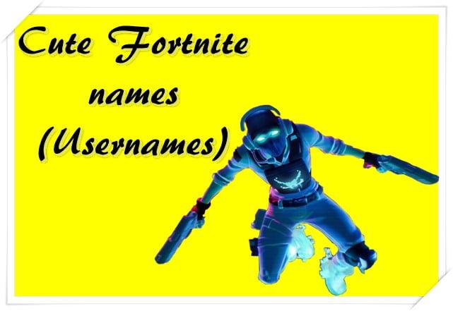 Cute Fortnite names (Usernames)