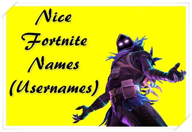 Nice Fortnite Names (Usernames)