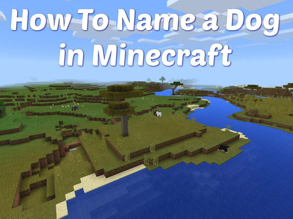 How to Name a Dog in Minecraft (2020)