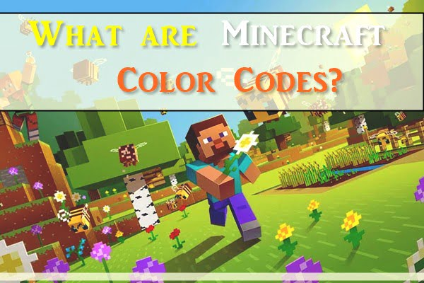 What Are Minecraft Color Codes?