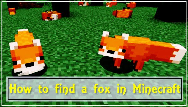 How to Find a Fox in Minecraft?