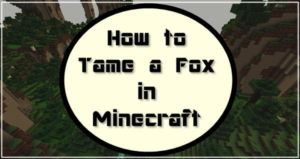 How to Tame a Fox in Minecraft? 2020 Tutorial