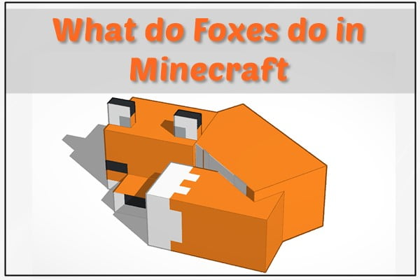 What Foxes Do in Minecraft?