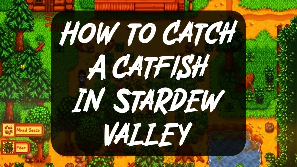 How to Catch A Catfish In Stardew Valley + Location, Where to Find Them?