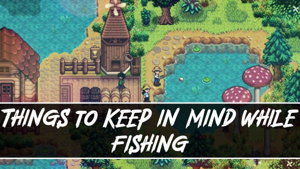Things to Keep in Mind While Fishing