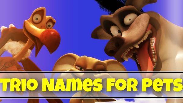 Trio Names For Pets (2021)