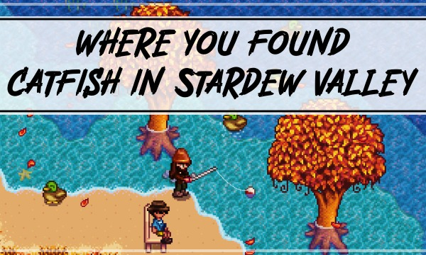 How and Where You Find Catfish in Stardew Valley?